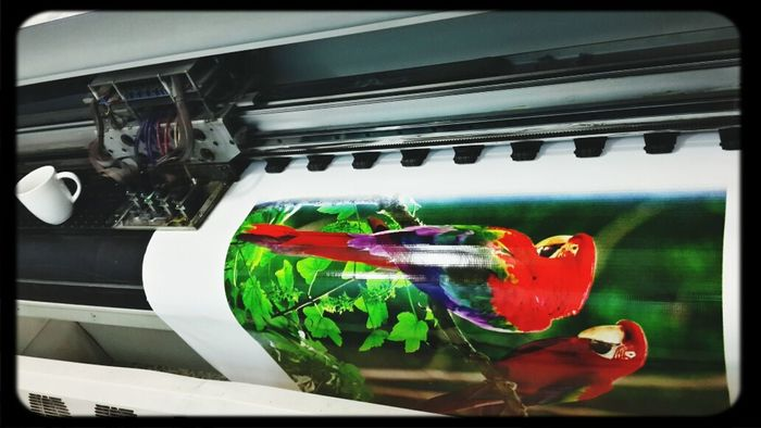 Hello World That's Me Printing Machine Printer @Design @tasmeem printing centre......