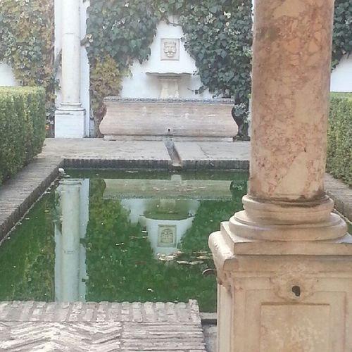 قصر اشبيلية الكازار الأندلس Seville Palace Alkazar Real_alkazar Andalucía SPAIN