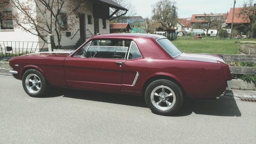 Ford Mustang Taking Photos Check This Out Oldtimer Ford Mustang Car On Street