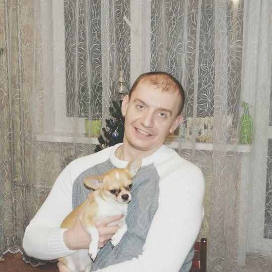 Hi! Animals Dog Dog❤ Doggy Chihuahua Chihuahuas<3 Chihuahua Love ♥