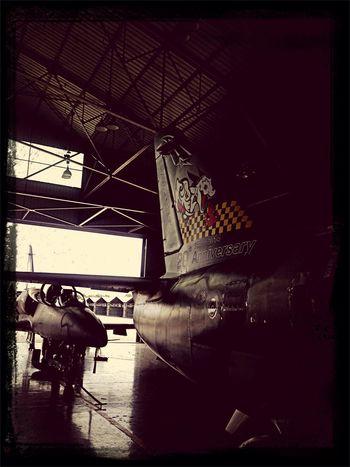 20 Annivresary L-39