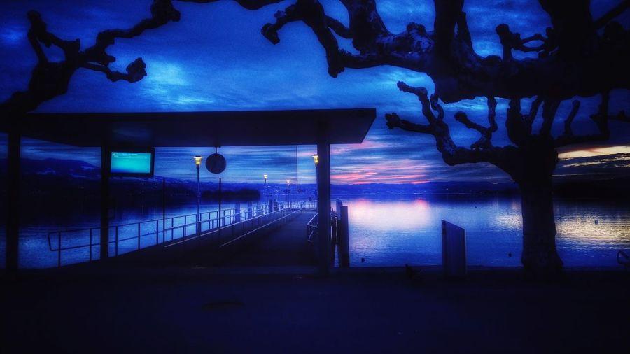 Lake Zürich Lake Illuminated Water Lighting Equipment Sky Built Structure