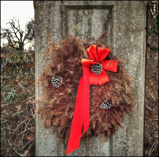 RUSTBELT CHRISTMAS ~ Independence, Missouri USA ~ Red Christmas No People Day Flower Outdoors Close-up Kcac Artist Memories Wreaths Across America Walker Evans William Christenberry Patina_perfection Cityscape Street Views Ghosts Missouriphotography Nostalgia Roadside Relicsofthepast Urbanphotography Dried Pine Needles Winter Landscape