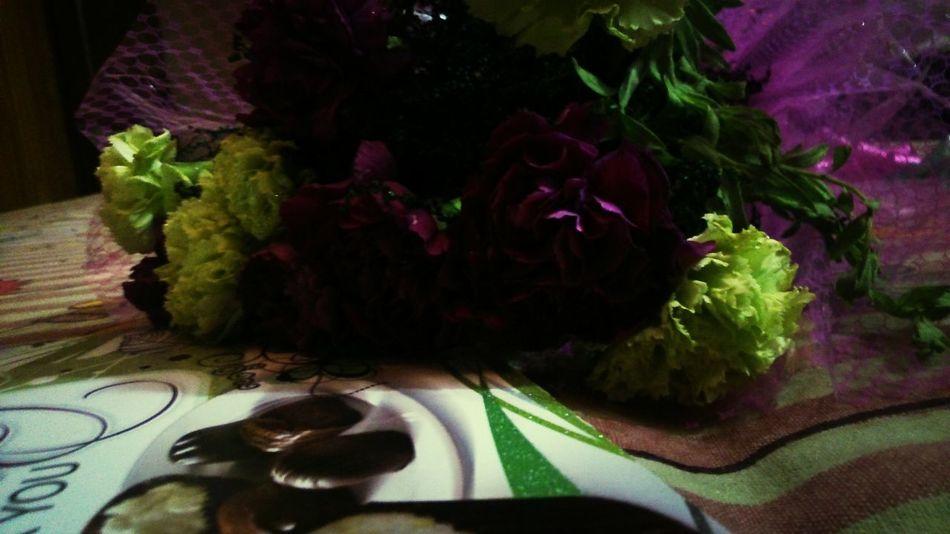 Flowers Bokeh WOW