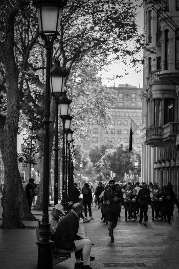 People walking on street amidst trees in city