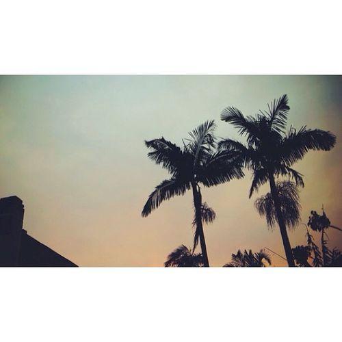 Summer vibes // Vscocam