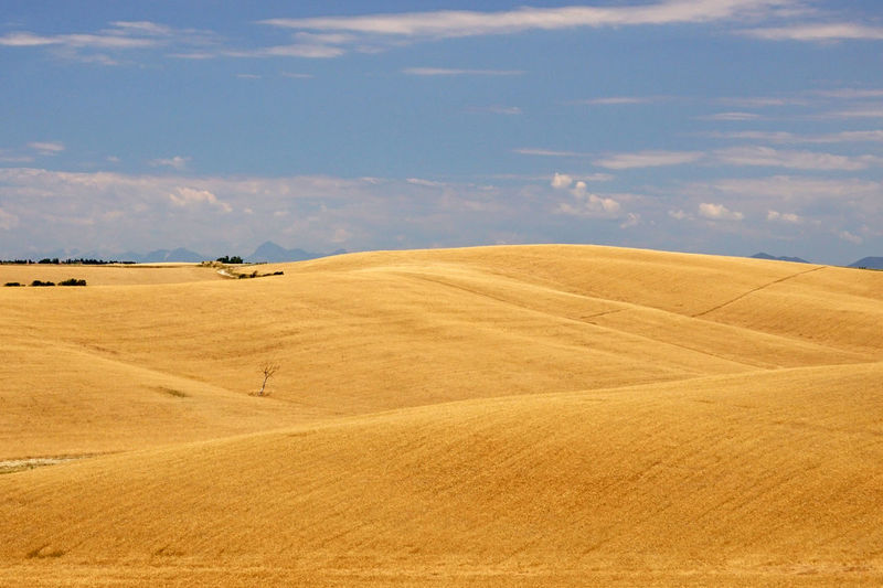 Hills and minimalism in tuscany