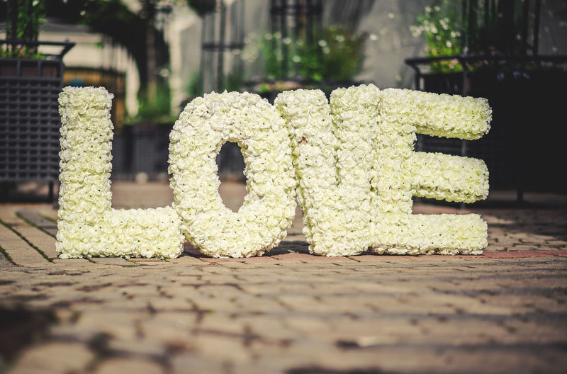 Love text of roses on footpath