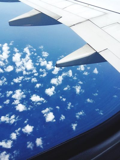Blue Sky Cloud - Sky Day Nature No People Airplane Outdoors Beauty In Nature Scenics Airplane Wing