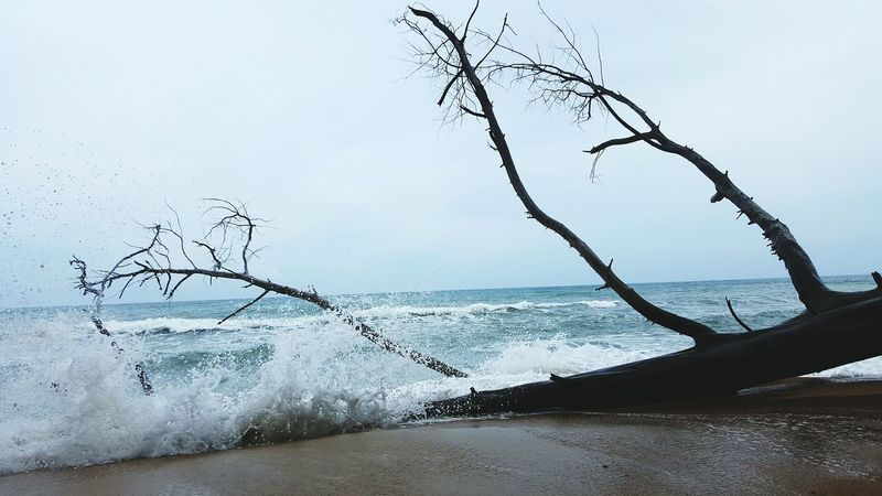 Sound Of Life Hello World Hi! That's Me Natural Phuket Would Sky Sea Fun Happy Thailand Beautiful View Beach