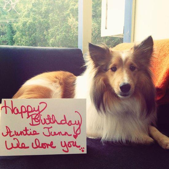 Happy Birthday! Auntie!