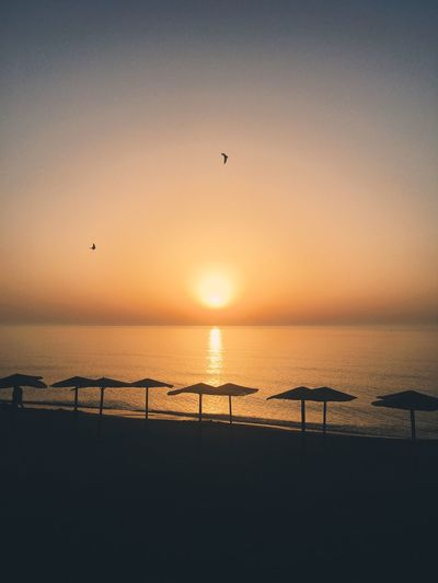 Sommergefühle Sunset Sea Silhouette Beauty In Nature Nature Scenics Tranquil Scene Horizon Over Water Water Sun Sunlight Tranquility Beach Sky Outdoors No People Bird Flying Clear Sky Day Romania Summer Mood Wave