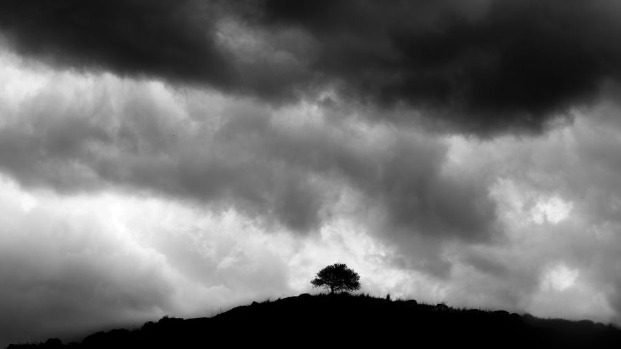 Low angle view of silhouette trees against storm clouds