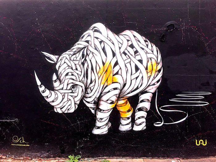 No People Graffiti Graffiti Art Graffitiporn Grafitti Camden Town Animal Animals Rhino Rhinoceros Unraveling Unravel Bandage Blackandwhite Black White Orange Color Orange Urban Art ArtWork Streetphotography Street Photography Street Streetart