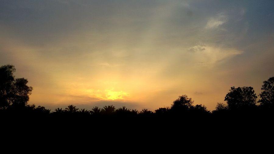 Sunset Beautiful Nature Photography Sun POTD Orangehues Bluehues