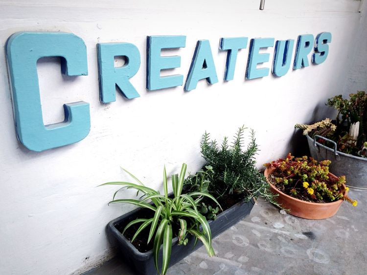 Decoration Creativity Create Createur Art Artist Shop Plants Cute Green Vegetation Nature On Your Doorstep ArtWork Design Déco Welcome Artistic Artists Marseille Things I Like Hidden Gems