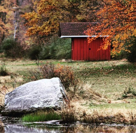 Autumn Built