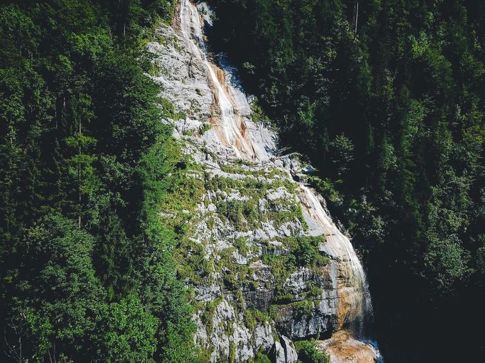 Nature Waterfall Rock - Object Beauty In Nature Tranquility Scenics No People Forest Tree Tranquil Scene Day Outdoors Non-urban Scene River Green Color Water Motion Growth Plant Mountain EyeEm Gallery Lost In The Landscape Beauty In Nature Berchtesgadener Land  Berchtesgaden The Great Outdoors - 2018 EyeEm Awards