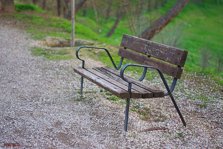 Park - Man Made Space Loneliness Solitude Wood - Material Park Bench Park Seat Chair Empty Outdoors Bench Benches Parque  Absence Banco Bancos No People Spain♥ Benchlovers España🇪🇸 Bench Seat Benchinthepark Lieblingsteil Soledad Vacio Grass Plant Nature Day Land Field