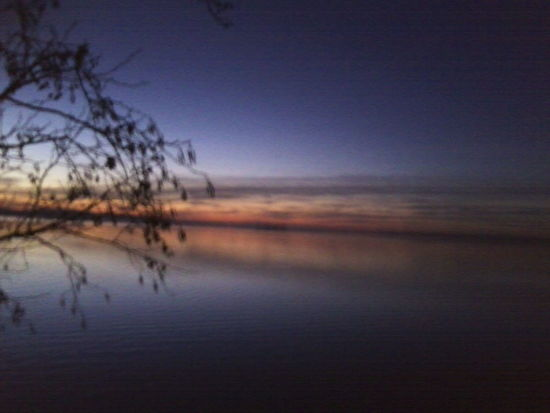 Beauty In Nature Lake Water Sunset Tree Horizon Over Water Scenics Nature Sky Cloud - Sky Outdoors First Eyeem Photo