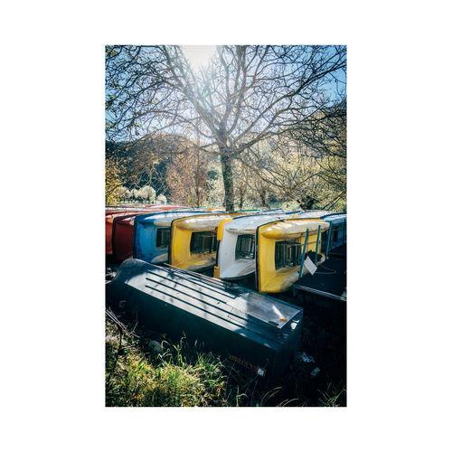 Tree Train - Vehicle
