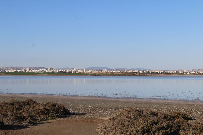 Cyprus Larnaca, Cyprus Larnaca Salt Lake Water Nature Tranquil Scene Scenics Clear Sky Tranquility Beauty In Nature Day Outdoors Beach No People Lake Sand Landscape Blue Sky View Into Land