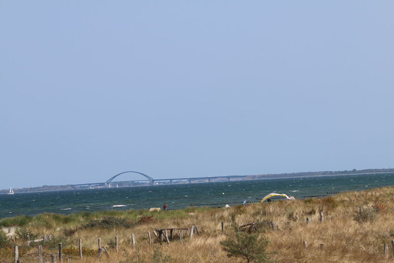 Fehmarn-Sund-Brücke Fehmarnsundbrücke Landschaft Landschaften Beach Beauty In Nature Clear Sky Copy Space Day Environment Fehmarn Fehmarn Belt Grass Horizon Horizon Over Water Land Landscape Nature No People Plant Scenics - Nature Sea Sky Tranquil Scene Water