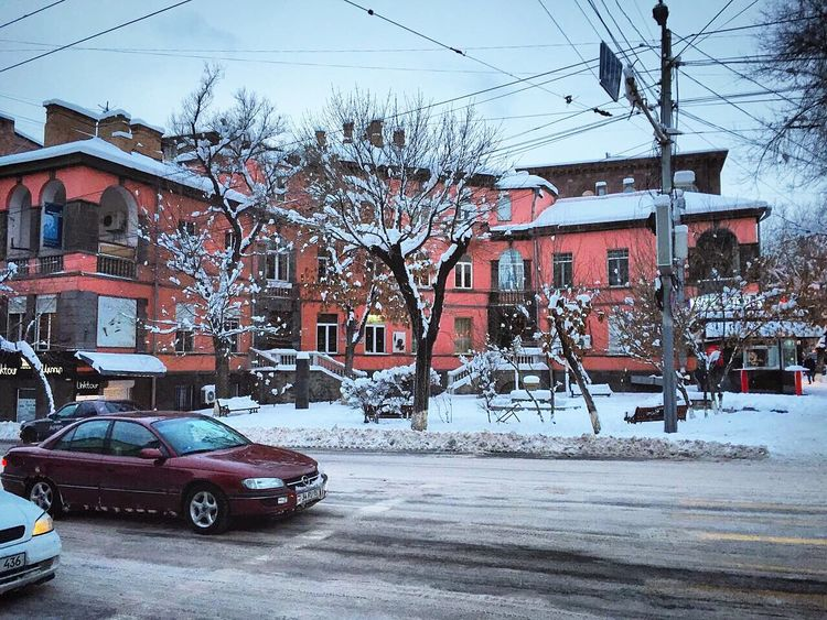 Freezing Cold Colors Colours Snow Snowing Snowy Snowy Days... Tree Trees Car Cars Streetphotography Street Building Pink Pinkcity Structure Winter Wintertime White Yerevan Armenia