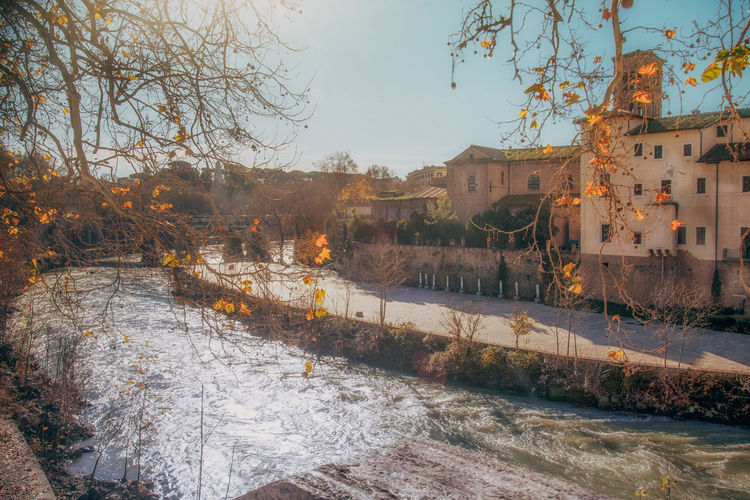 Architecture Tree Built Structure Building Exterior Plant Nature Sky No People City Building Water Day Winter Outdoors Cold Temperature Residential District Autumn Snow Bare Tree River Change Tevere Rome Italy River View