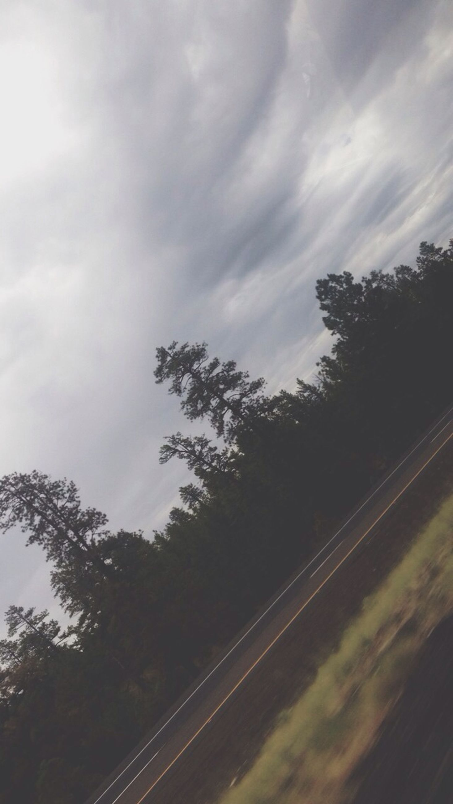 tree, sky, cloud - sky, cloudy, cloud, transportation, tranquility, low angle view, nature, the way forward, tranquil scene, road, beauty in nature, scenics, growth, outdoors, day, silhouette, no people, overcast