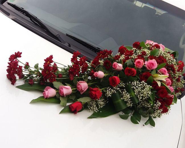 Carbouquet Bouquet Of Flowers NoEditNoFilter Mywork ILoveMyJob MyClick Lilly Rosé Chrisanthemum Flower Jipsophila