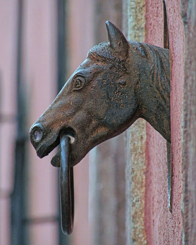 Horse Tie-Up in the street in San Miguel de Allende, Mexico Guanajuato Guanajuato, México Horse Tie-up Iron Mexico Rust San Miguel San Miguel De Allende Wall Architectural Detail Cast Iron Colonial Depth Of Field Historic History Horse Metal Rusty Street Urban Wall Feature