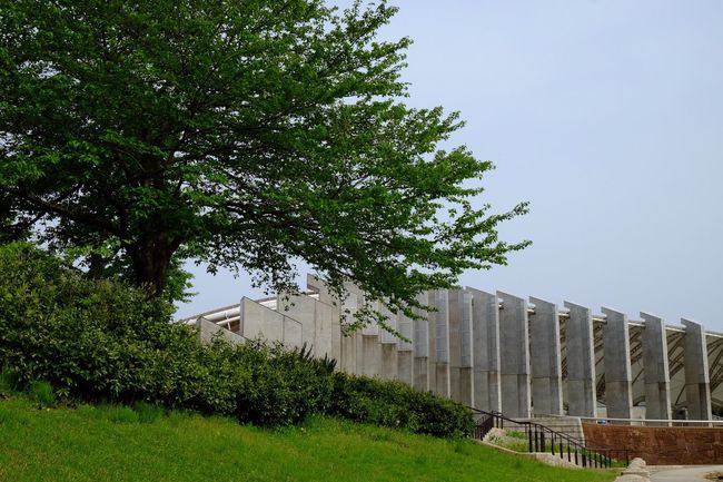 Niigata-shi Park Japan EyeEm Gallery