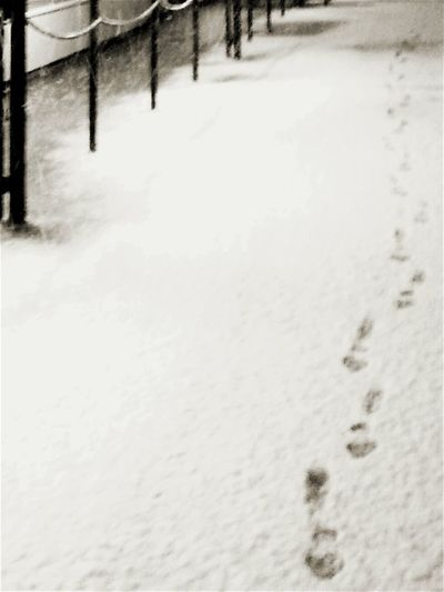 It's Cold Outside Lonely Track Lonely Walk In The Snow By A Row Of Steel Poles Snowtrapped Snowsteps