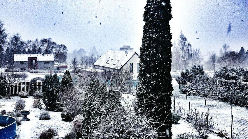 Snow ❄ Snow❄⛄ Snow ... Iloveit 🙏
