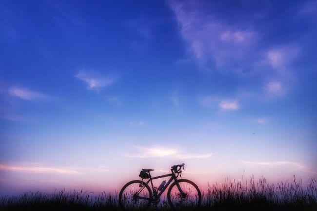 おはようございます 朝チャリ サイクリング 自転車 ロードバイク 日の出 夜明け 朝焼け 朝 グラデーション 空 Morning Glory Gradationcolor Gradation Bicycle Cycling Sky Sunset Nature EyeEm Nature Lover Good Morning EyeEm Best Shots Morning Morning Sky Beauty In Nature