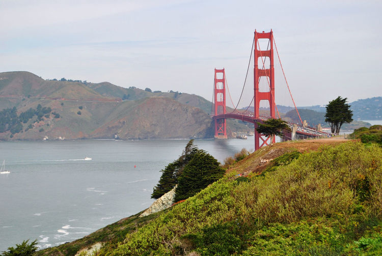 Golden State Bridge San Francisco Architecture Beauty In Nature Bridge - Man Made Structure Day Golden State Grass Landscape Mountain Nature No People Outdoors Scenics Sea Sky Suspension Bridge Tranquility Travel Destinations Tree Water
