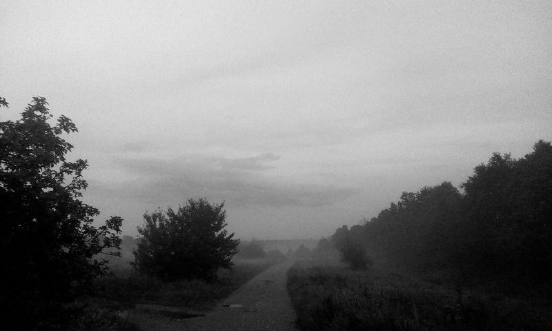MYSTER Way Black & White Grey Sky Grey Fade Secretworld Lightsky Anyone Darksouls