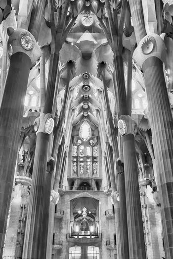 BARCELONA - AUGUST 9: Interior design of the Sagrada Familia, the most iconic landmark designed by Antoni Gaudi in Barcelona, Catalonia, Spain, on August 9, 2017 Low Angle View Architecture Built Structure Place Of Worship Building Religion Spirituality Belief Ceiling Indoors  Architectural Column No People Architectural Feature The Past History Travel Destinations Arch Architecture And Art Ornate Carving