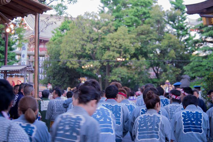 Asakusa Shrine Asakusa,tokyo,japan Festive Season Prayer Of The People Sacred Time Tokyo,Japan 三社祭 宮出し