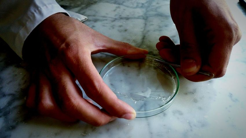 EyeEm Selects Human Hand Human Body Part Engineers Usthb Polymeric Glass Studying Drems Hand Ring One Person People Day