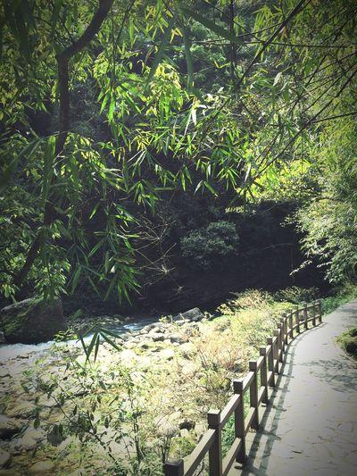 黑山谷 First Eyeem Photo