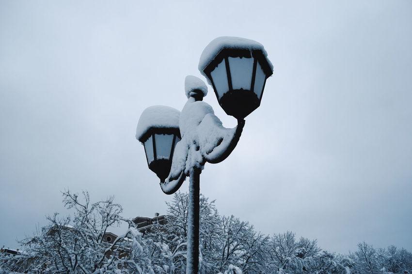Winter Winter Wonderland Snowing Cold Days