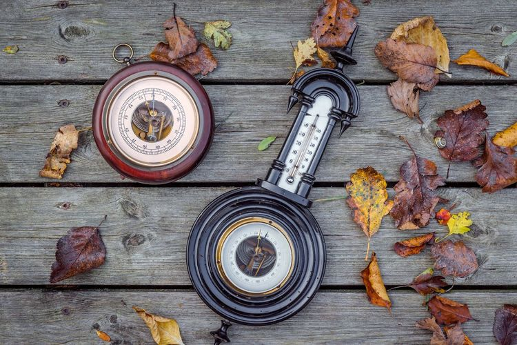 Barometer in the fall with autumn leaves Measurement Season  Autumn Fall Barometer Weather Leaf Wood - Material High Angle View No People Directly Above Autumn Indoors  Day Close-up Freshness