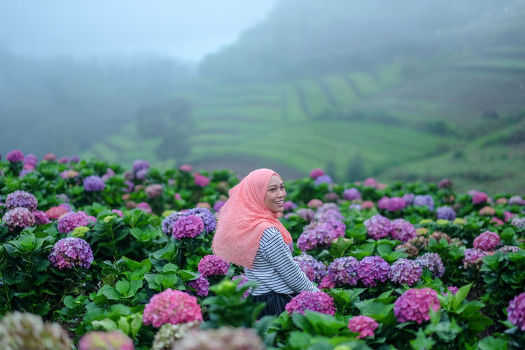 View of purple flowering plants on land