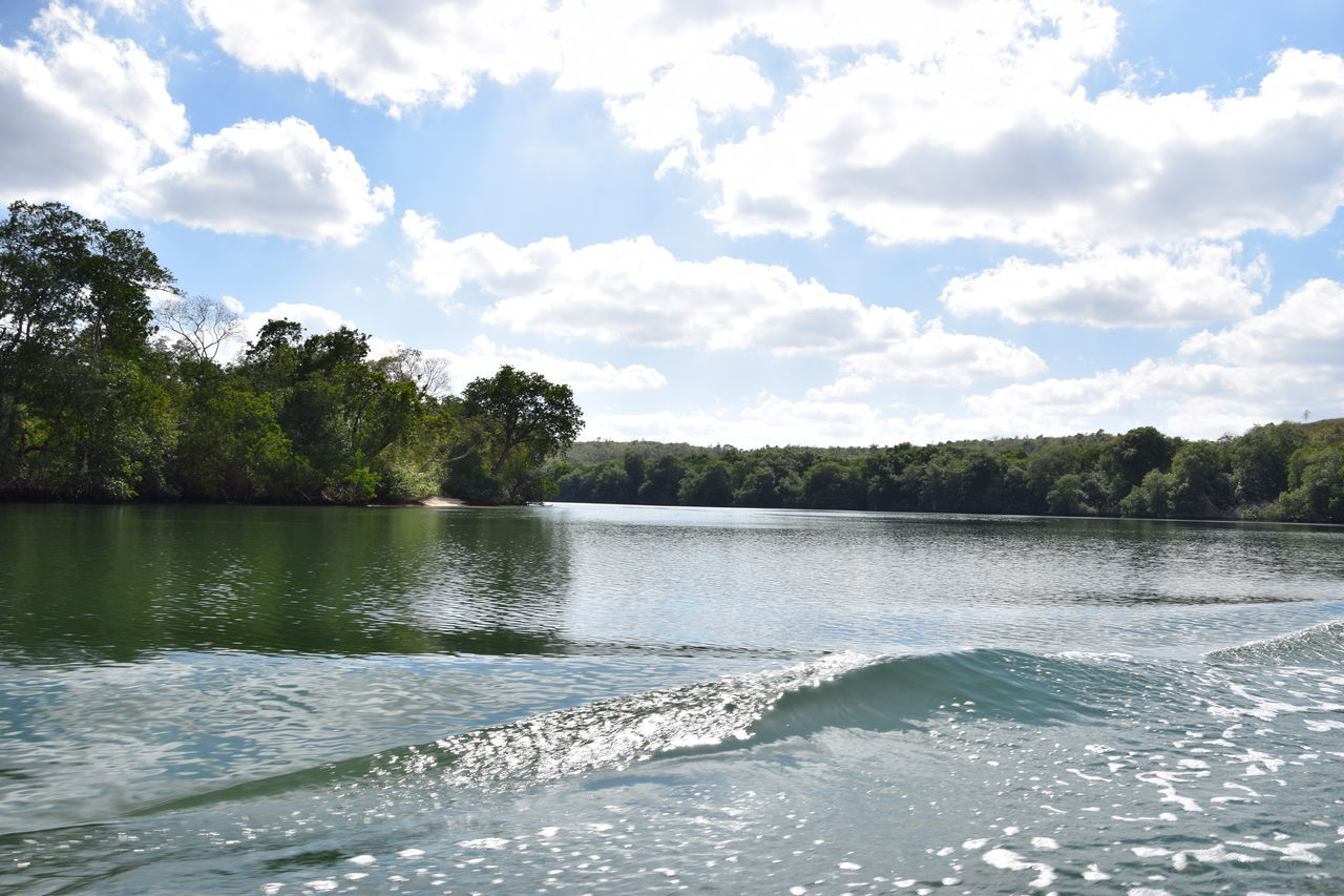 water, nature, tree, beauty in nature, no people, sky, tranquility, cloud - sky, scenics, day, outdoors, tranquil scene, lake
