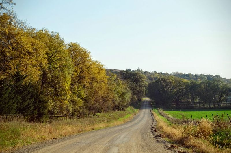 Photo essay - Marysville, Kansas October 15, 2016 A Day In The Life America Autumn Camera Work Country Road Diminishing Perspective Empty Road Eye For Photography Fall Collection Kansas Lush Foliage MidWest Nature No People Non-urban Scene Oregon Trail Photo Diary Photo Essay Road Rural America Solitude The Way Forward Tranquil Scene Vanishing Point Visual Journal
