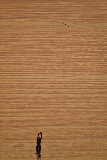 Full length of man standing on sea shore