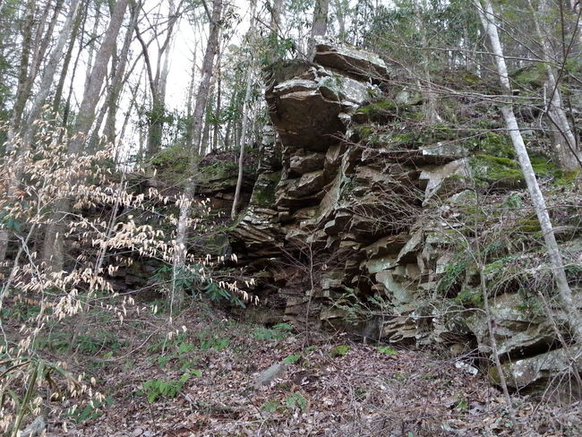 Tree Nature Outdoors No People Day Landscape Rock Formation Low Angle View Sky