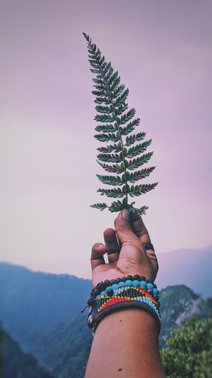 Woman holding plant against mountain against sky
